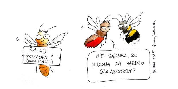 pszczoly justyny