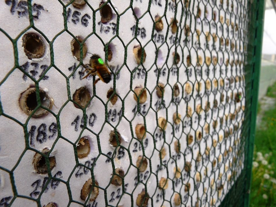 szafki z gniazdami(1)